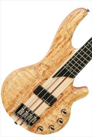 Tanglewood Canyon III Spalted Maple - Active Bass