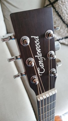 Tanglewood Winterleaf TW2 T - Travel Guitar - Pre-Owned