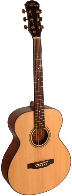 Freshman - Maple Ridge FA1FNS - Folk Guitar - Natural Satin